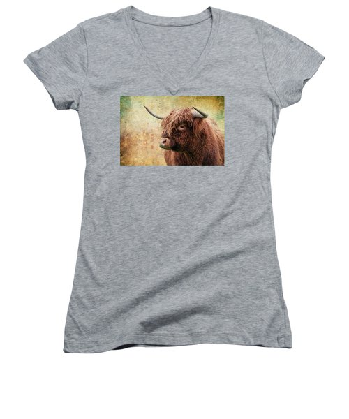 Scottish Highland Steer Women's V-Neck T-Shirt