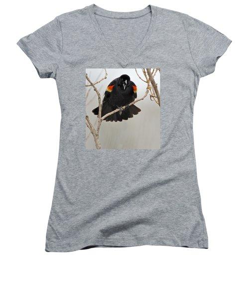 Screaming Meenie Women's V-Neck T-Shirt