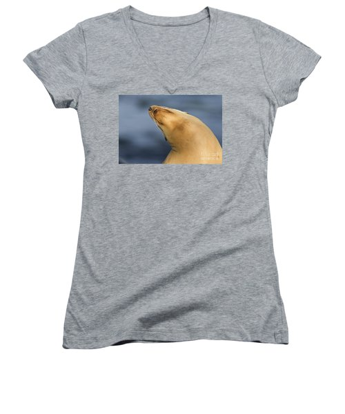 Women's V-Neck T-Shirt (Junior Cut) featuring the photograph Sea Lion Stretch by Bryan Keil