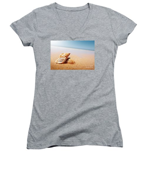 Seashell And Conch Women's V-Neck T-Shirt (Junior Cut) by Carlos Caetano