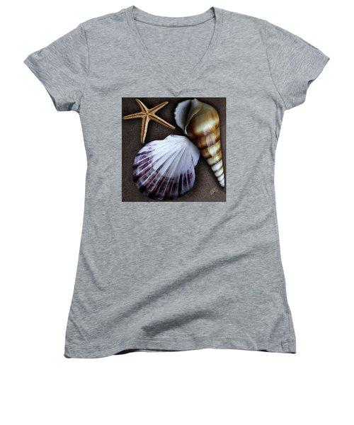 Seashells Spectacular No 37 Women's V-Neck T-Shirt (Junior Cut) by Ben and Raisa Gertsberg