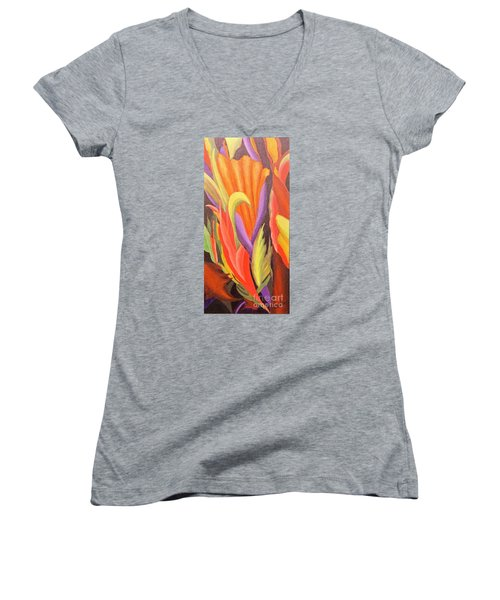 Secret Place Women's V-Neck T-Shirt