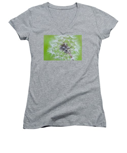 Seeds Of Life Women's V-Neck (Athletic Fit)