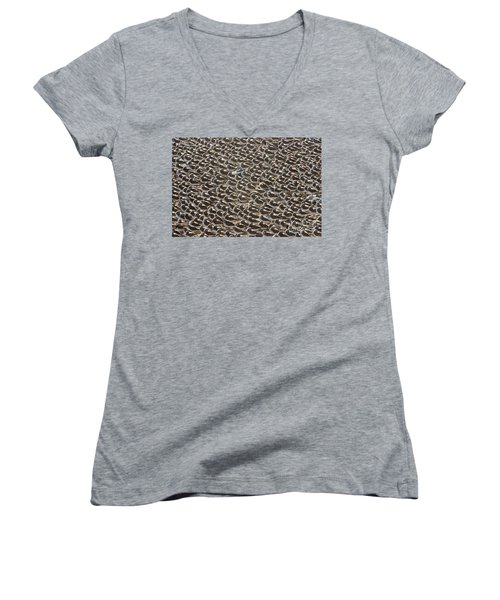 Semipalmated Sandpipers Sleeping Women's V-Neck T-Shirt (Junior Cut) by Yva Momatiuk John Eastcott