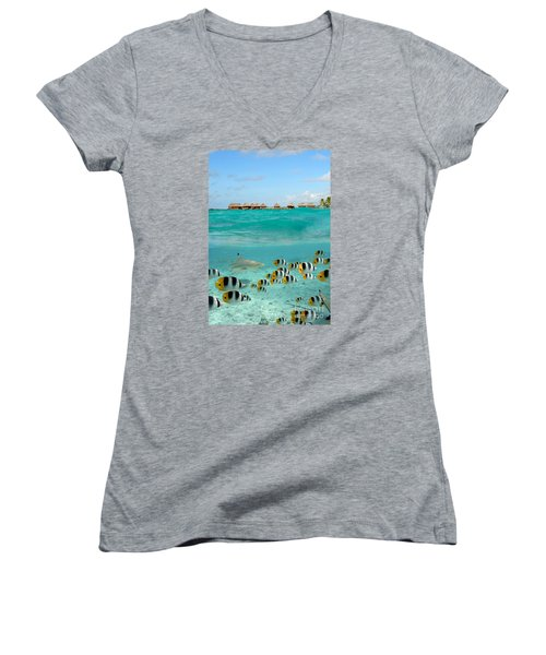 Over-under With Shark And Butterfly Fish At Bora Bora Women's V-Neck T-Shirt (Junior Cut) by IPics Photography