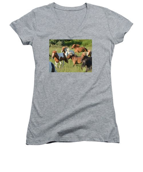 She Has Carrots Women's V-Neck T-Shirt (Junior Cut) by Amy Porter