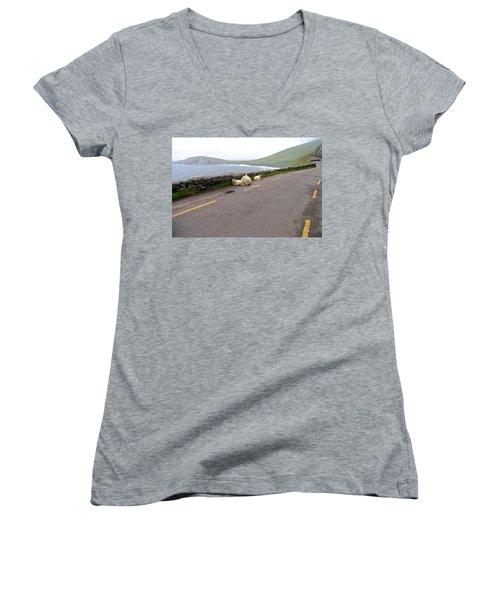 Women's V-Neck T-Shirt (Junior Cut) featuring the photograph Shelter by Suzanne Oesterling