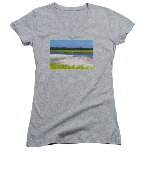 Shorebirds And Marsh Grass Women's V-Neck