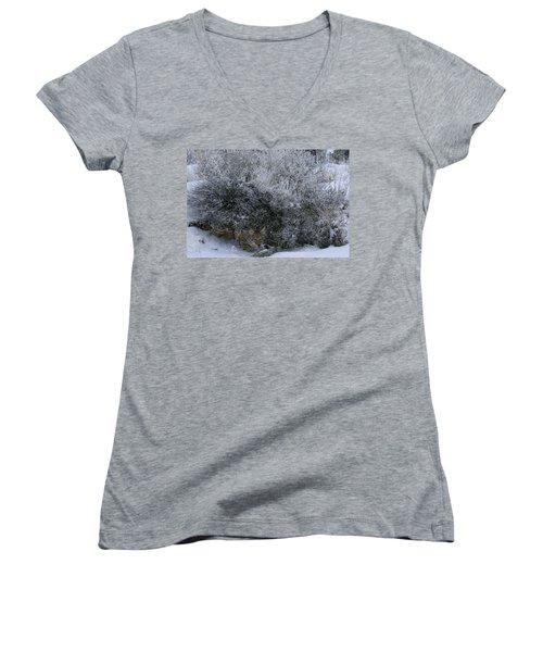 Silent Accord Women's V-Neck T-Shirt (Junior Cut) by Ed Hall