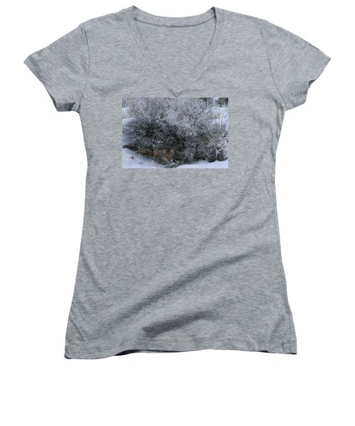 Silent Accord Women's V-Neck T-Shirt