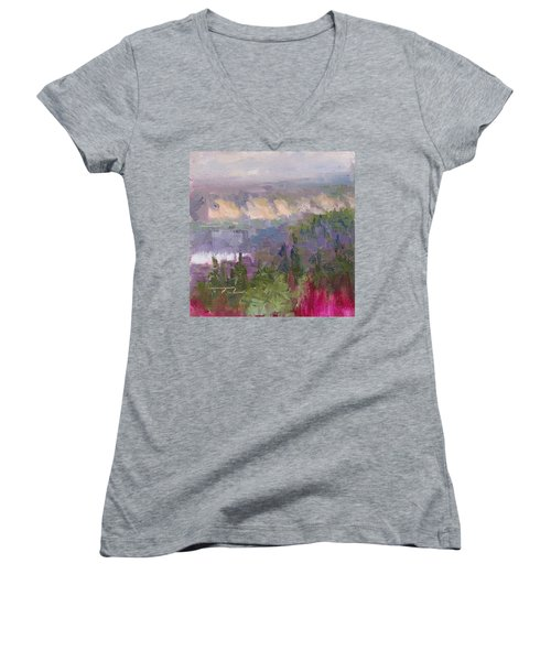 Silver And Gold - Matanuska Canyon Cliffs River Fireweed Women's V-Neck