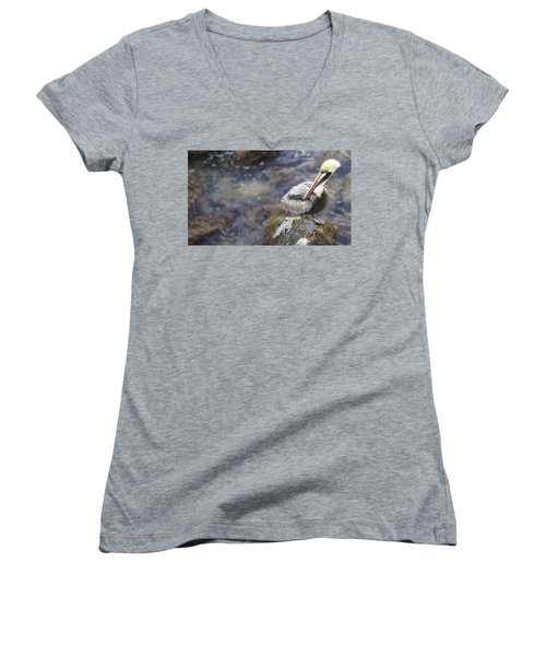 Sitting On A Rock In The Bay Women's V-Neck