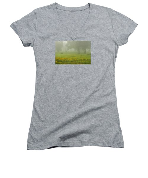 Women's V-Neck T-Shirt (Junior Cut) featuring the photograph Skc 0835 Romance In The Meadows by Sunil Kapadia