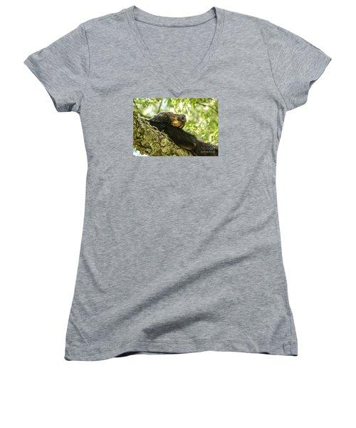 Sleeping Bear Women's V-Neck T-Shirt