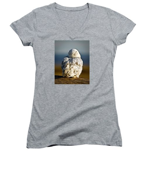 Sleeping Snowy Owl Women's V-Neck T-Shirt