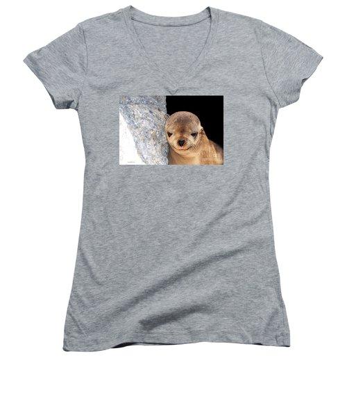 Sleepy Baby Sea Lion Women's V-Neck T-Shirt (Junior Cut) by Susan Wiedmann