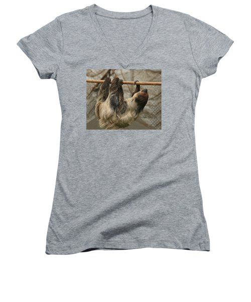 Sloth Women's V-Neck T-Shirt (Junior Cut)