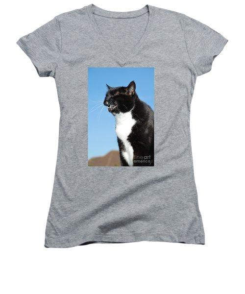 Sneezing Cat Women's V-Neck T-Shirt