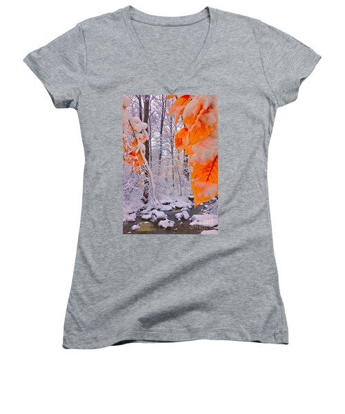 Snow Covered Woods And Stream Women's V-Neck T-Shirt