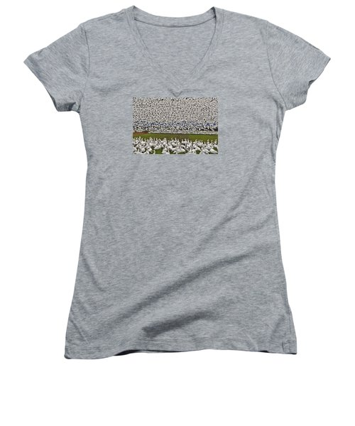 Snow Geese By The Thousands Women's V-Neck T-Shirt (Junior Cut) by Valerie Garner