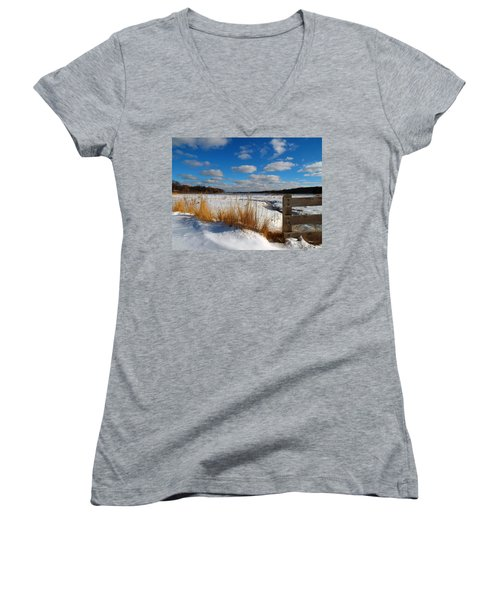 Snow Marsh Women's V-Neck T-Shirt (Junior Cut) by Dianne Cowen