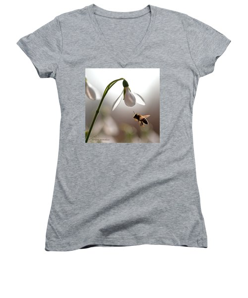 Snowdrops And The Bee Women's V-Neck T-Shirt (Junior Cut) by Torbjorn Swenelius