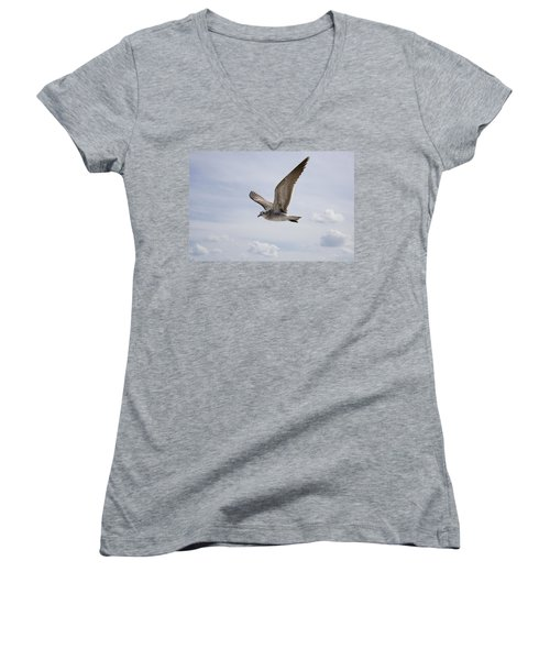 Soaring Gull Women's V-Neck T-Shirt