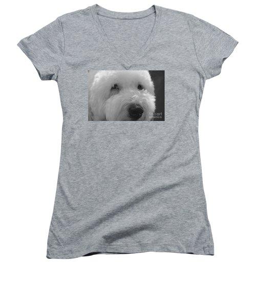 Soulful Eye's Old English Sheep Dog Women's V-Neck T-Shirt
