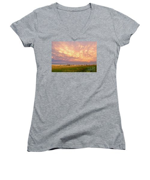 Southeastern New Mexico Women's V-Neck T-Shirt (Junior Cut) by Roselynne Broussard