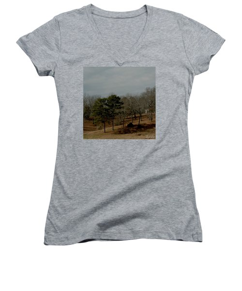 Women's V-Neck T-Shirt (Junior Cut) featuring the photograph Southern Landscape by Lesa Fine