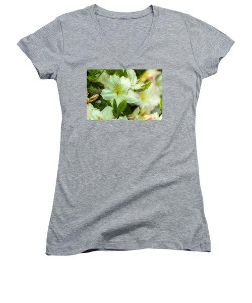 Speckled  Women's V-Neck T-Shirt