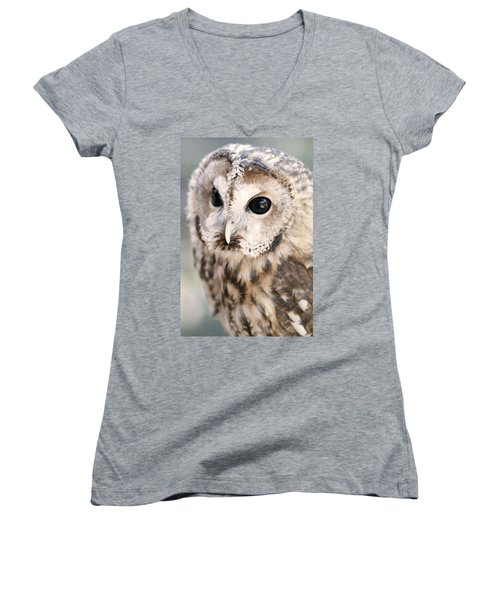 Spotted Owl Women's V-Neck (Athletic Fit)
