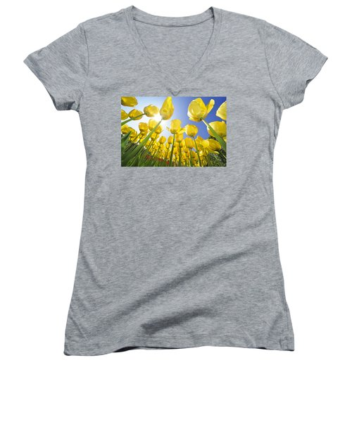 Spring Flowers 5 Women's V-Neck