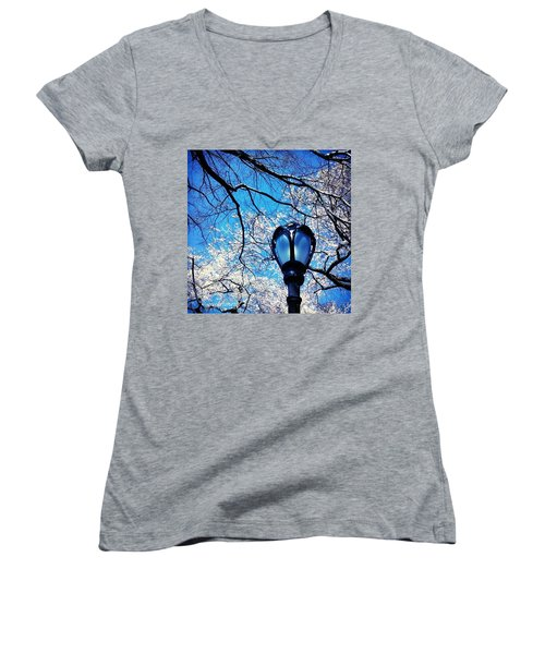 Spring In Central Park New York Women's V-Neck T-Shirt (Junior Cut) by Anna Porter
