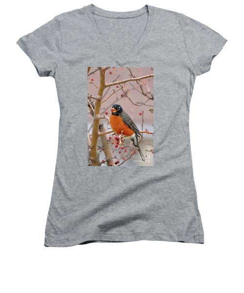 Spring Is Coming Women's V-Neck (Athletic Fit)