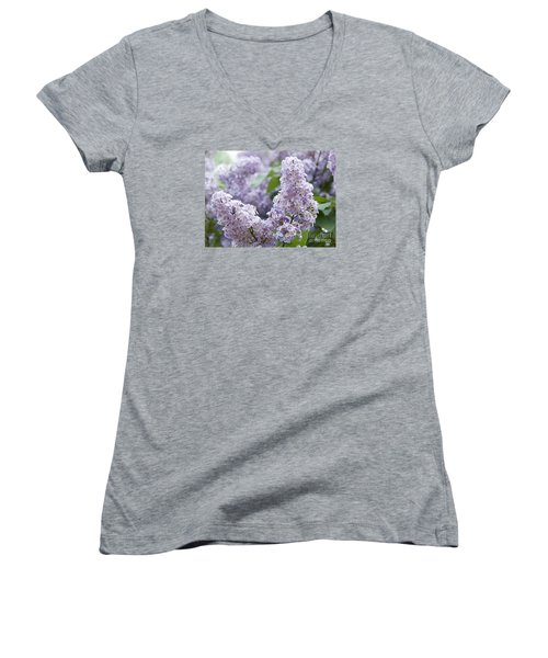 Spring Lilacs In Bloom Women's V-Neck T-Shirt (Junior Cut) by Juli Scalzi