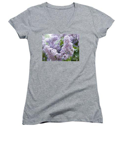 Spring Lilacs In Bloom Women's V-Neck