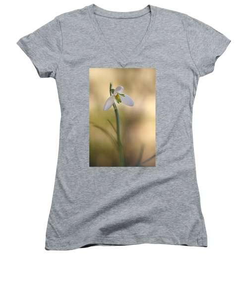 Spring Messenger Women's V-Neck