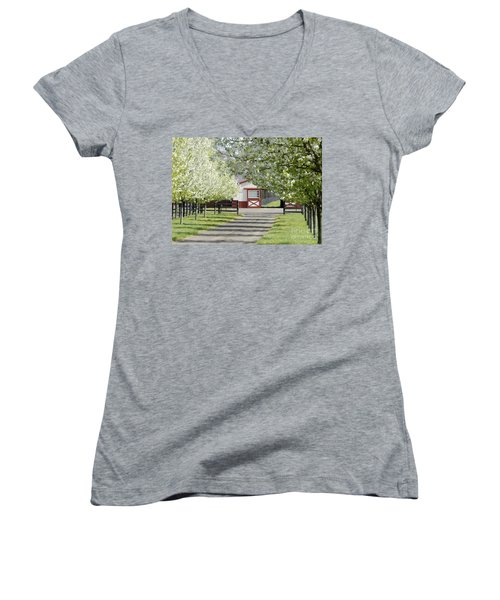 Spring Time At The Farm Women's V-Neck T-Shirt (Junior Cut) by Sami Martin
