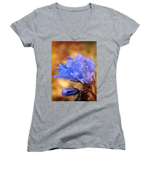 Spring Wildflowers - The Desert Bluebells Women's V-Neck