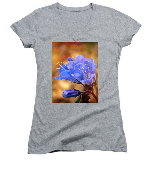 Spring Wildflowers - The Desert Bluebells Women's V-Neck