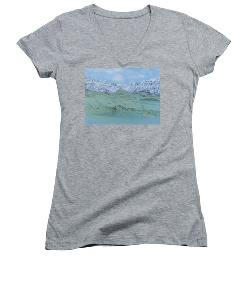 Springtime In The Rockies Women's V-Neck T-Shirt (Junior Cut) by Michele Myers