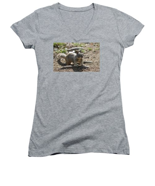Squirrel Play  Women's V-Neck