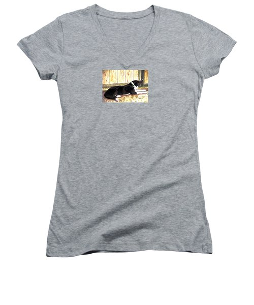 Women's V-Neck T-Shirt (Junior Cut) featuring the painting Stable Duty by Angela Davies