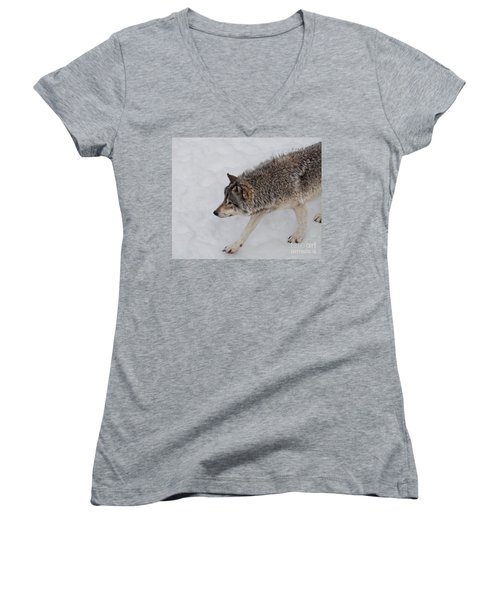 Women's V-Neck T-Shirt (Junior Cut) featuring the photograph Stalker by Bianca Nadeau
