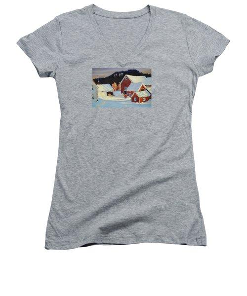 Stanley Kay Farm Women's V-Neck T-Shirt (Junior Cut) by Len Stomski