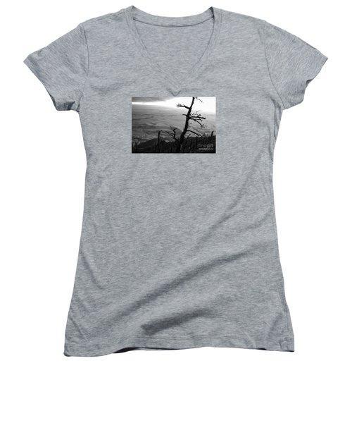 Stark Tree Women's V-Neck T-Shirt (Junior Cut) by Mary Carol Story
