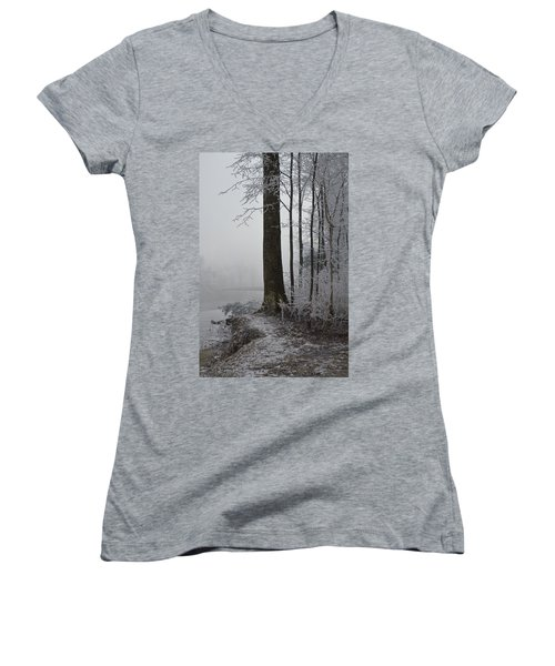 Steep And Frost Women's V-Neck T-Shirt (Junior Cut) by Felicia Tica
