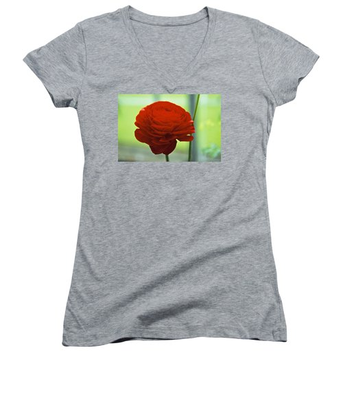 Women's V-Neck T-Shirt (Junior Cut) featuring the photograph Striking Red by Lana Enderle