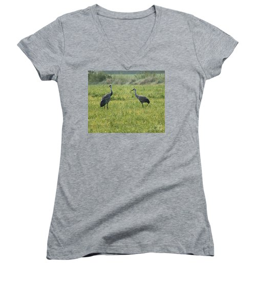 Women's V-Neck T-Shirt (Junior Cut) featuring the photograph Strolling Cranes by Debbie Hart
